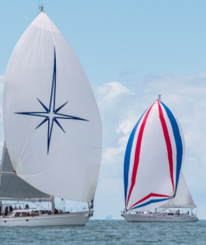Sailing yachts Tawera and Whirlwind can be identified by the bold spinnakers as they compete at the Mastercard Regatta 2021